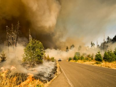 Insurance Coverage for Natural Disasters in Henderson, NV